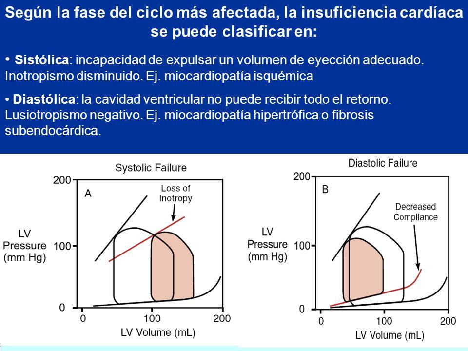 Según la fase del ciclo más afectada, la insuficiencia cardíaca se puede clasificar en: