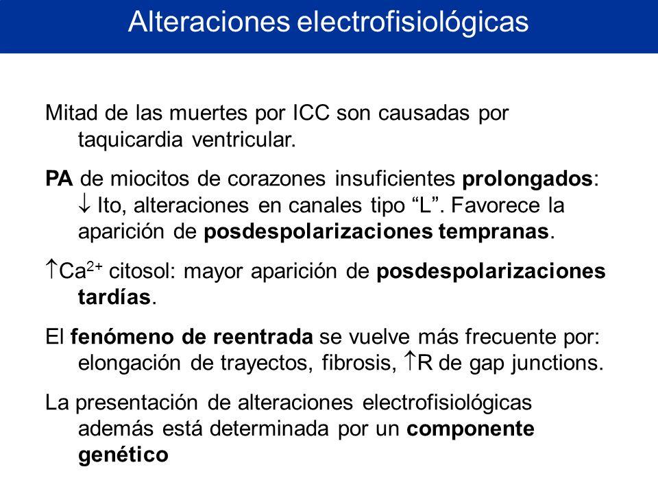Alteraciones electrofisiológicas