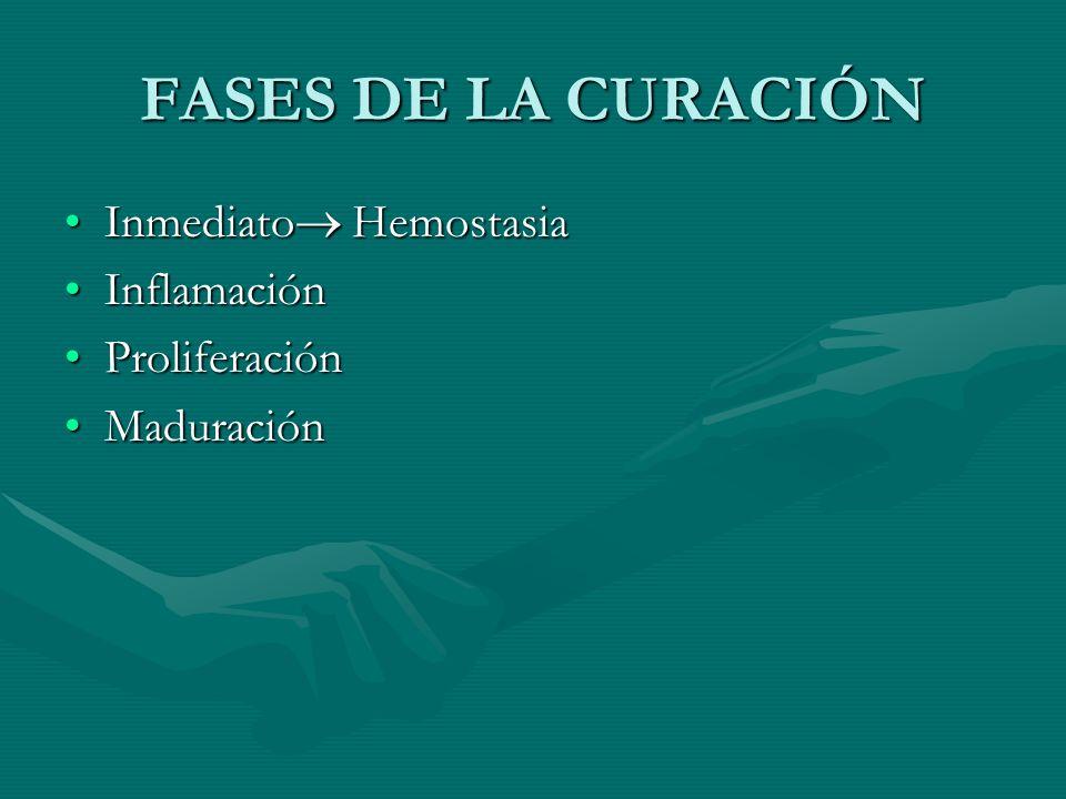 FASES DE LA CURACIÓN Inmediato Hemostasia Inflamación Proliferación