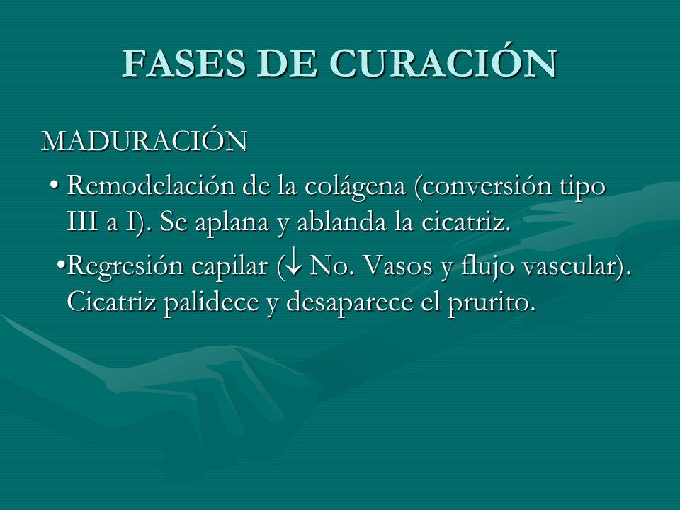 FASES DE CURACIÓN MADURACIÓN