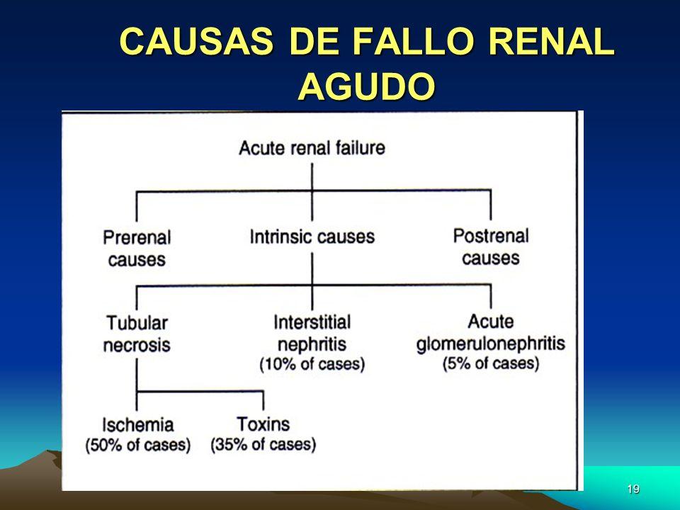 CAUSAS DE FALLO RENAL AGUDO