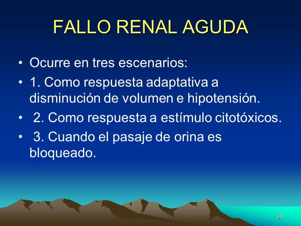 FALLO RENAL AGUDA Ocurre en tres escenarios:
