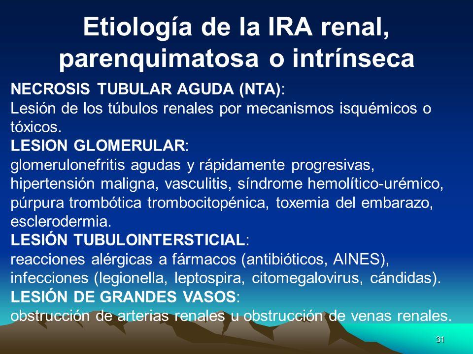 Etiología de la IRA renal, parenquimatosa o intrínseca