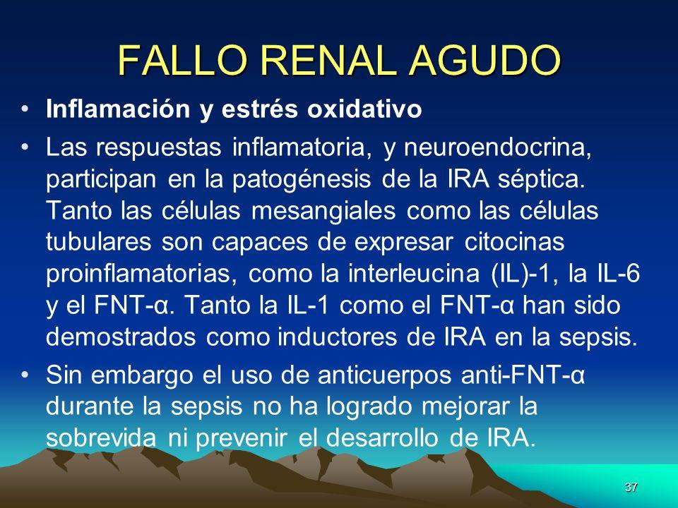 FALLO RENAL AGUDO Inflamación y estrés oxidativo