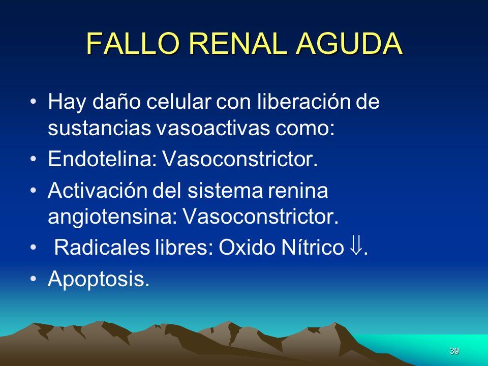 FALLO RENAL AGUDA Hay daño celular con liberación de sustancias vasoactivas como: Endotelina: Vasoconstrictor.