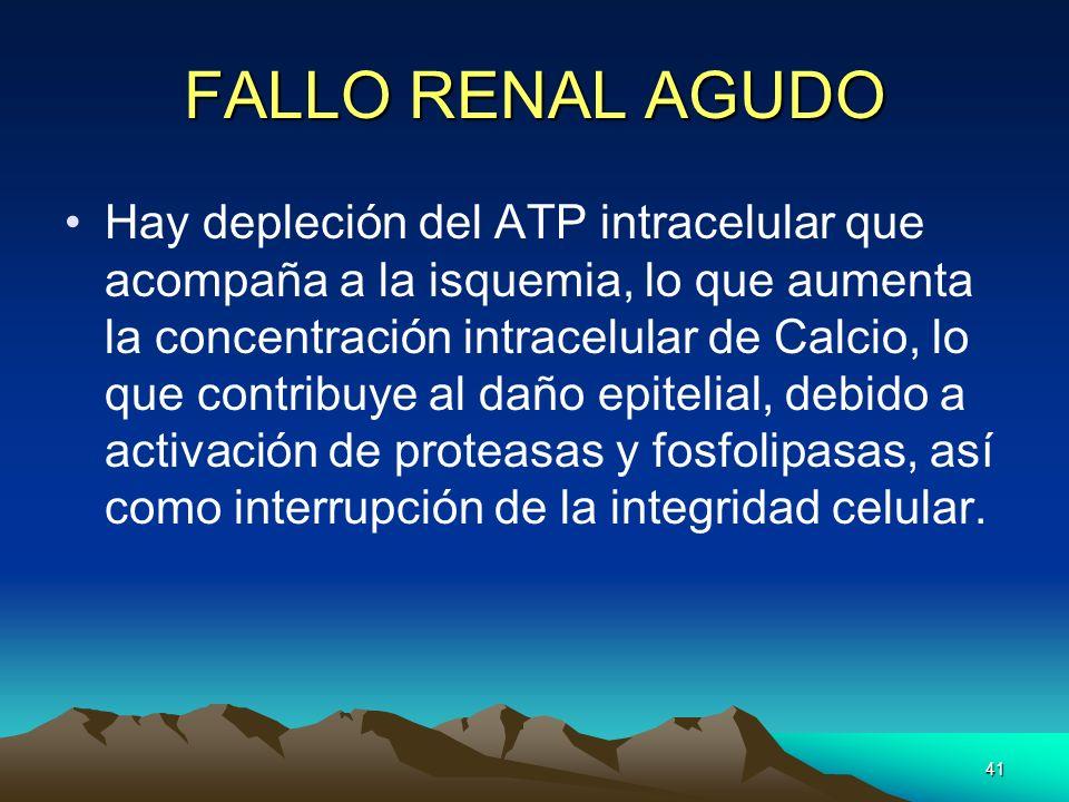 FALLO RENAL AGUDO