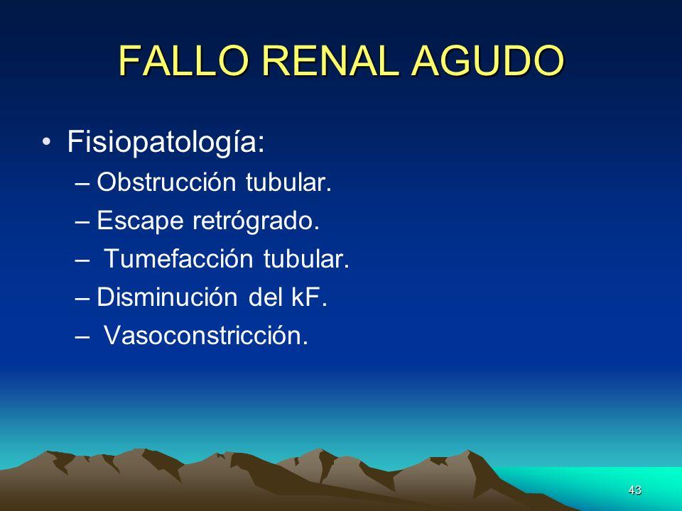 FALLO RENAL AGUDO Fisiopatología: Obstrucción tubular.