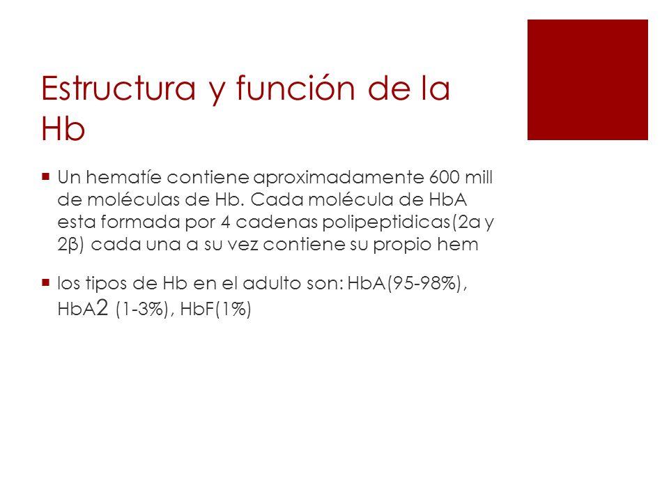 Estructura y función de la Hb