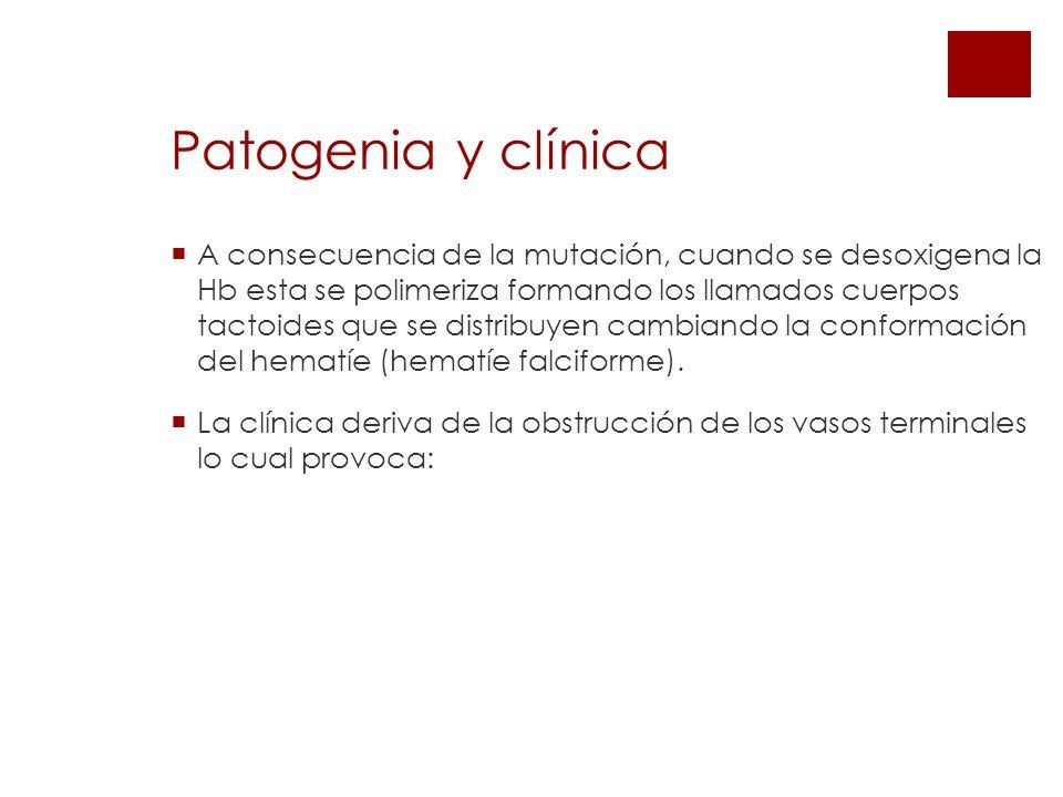 Patogenia y clínica