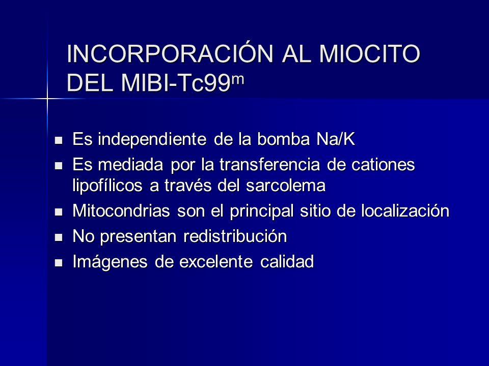 INCORPORACIÓN AL MIOCITO DEL MIBI-Tc99m