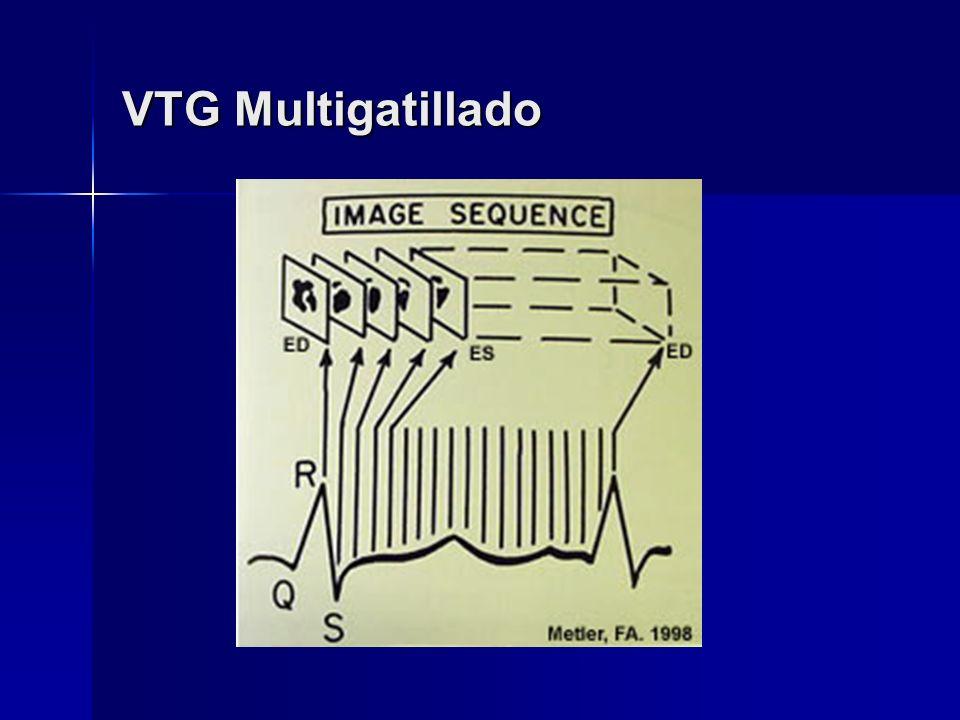 VTG Multigatillado