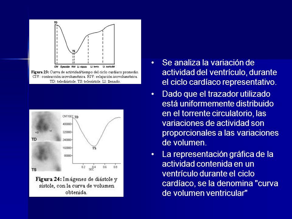 Se analiza la variación de actividad del ventrículo, durante el ciclo cardíaco representativo.