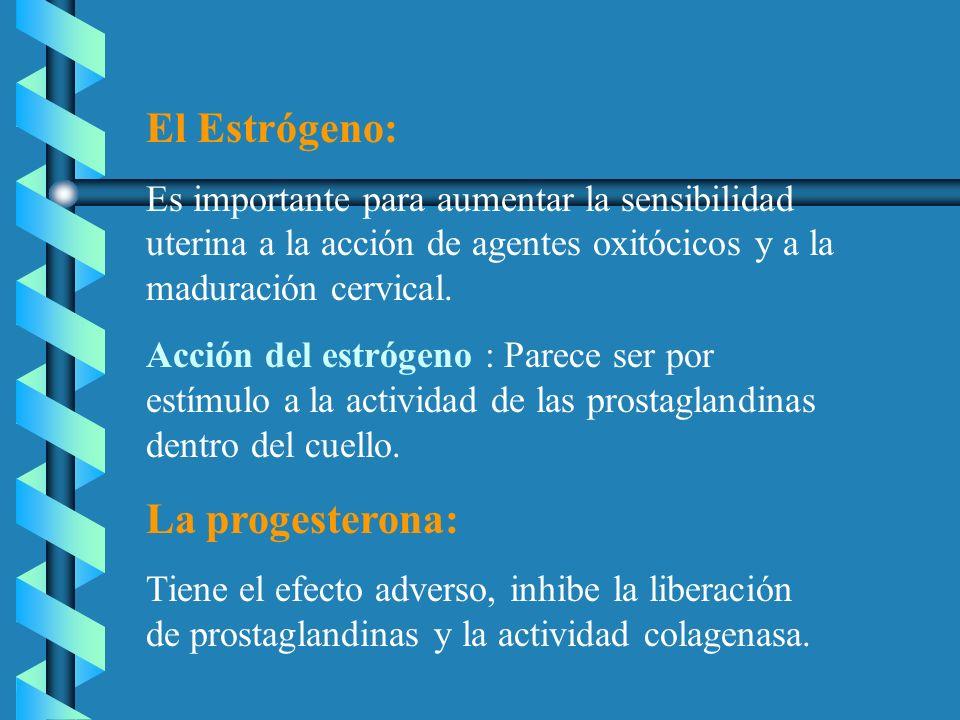 El Estrógeno: La progesterona: