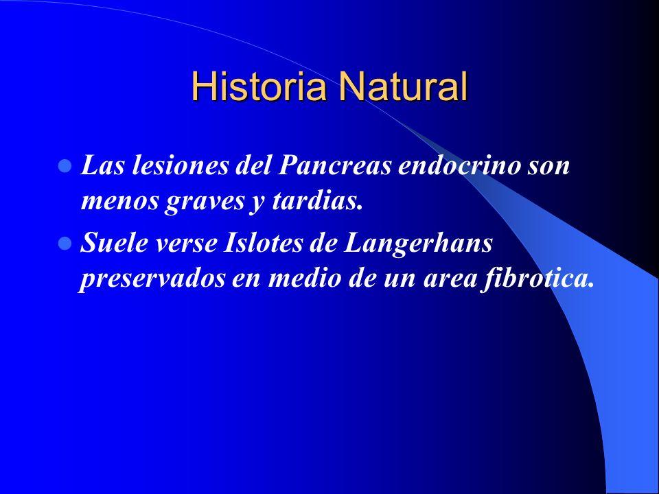 Historia NaturalLas lesiones del Pancreas endocrino son menos graves y tardias.