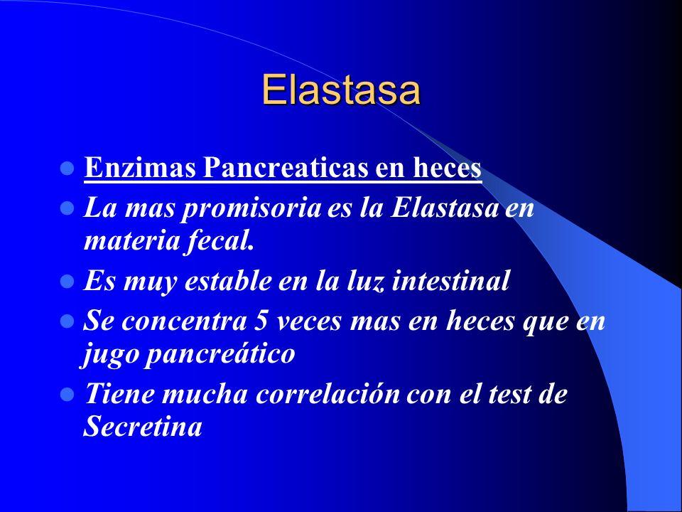 Elastasa Enzimas Pancreaticas en heces