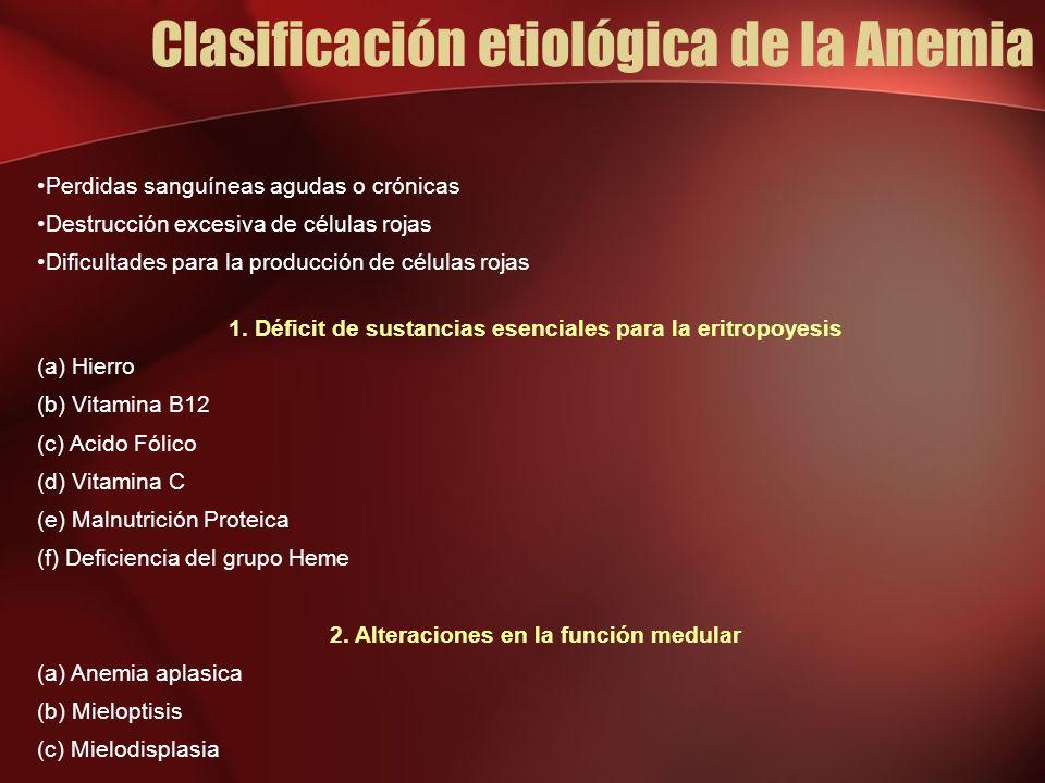 Clasificación etiológica de la Anemia