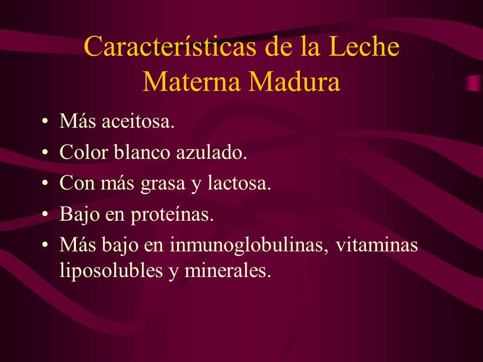 Características de la Leche Materna Madura