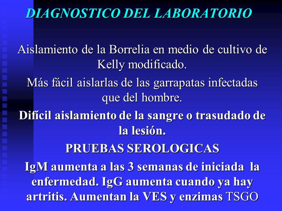 DIAGNOSTICO DEL LABORATORIO