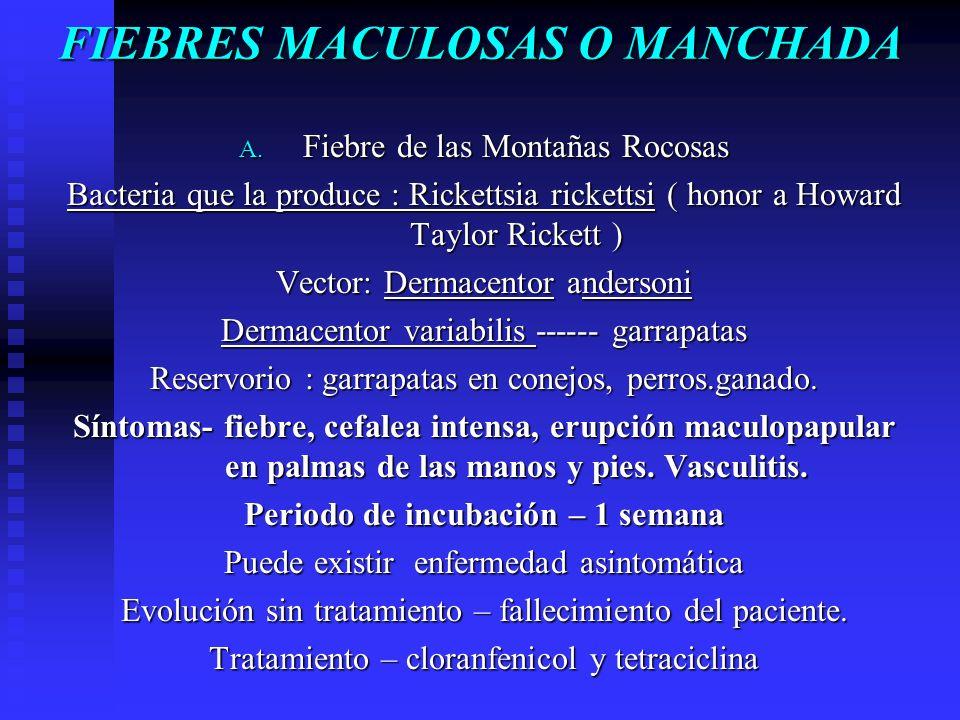 FIEBRES MACULOSAS O MANCHADA