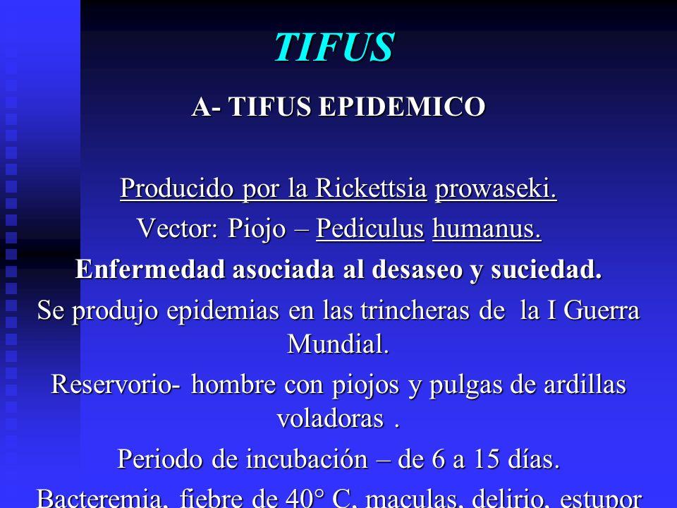 Enfermedad asociada al desaseo y suciedad.
