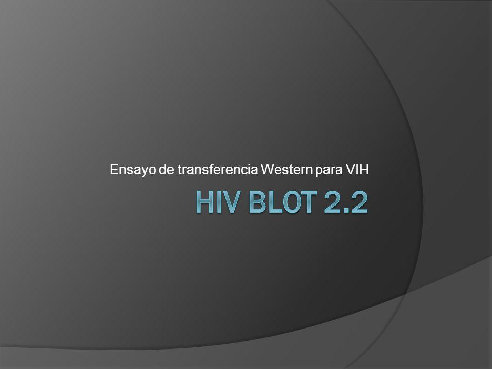 Ensayo de transferencia Western para VIH
