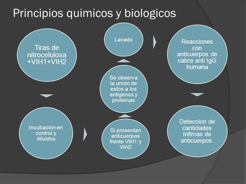 Principios quimicos y biologicos