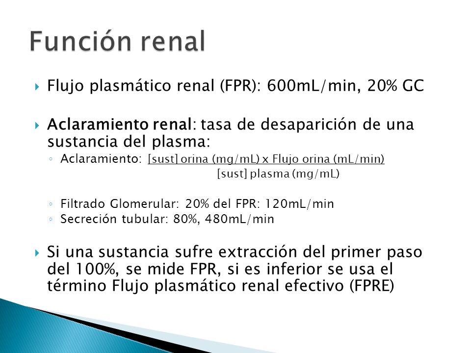 Función renal Flujo plasmático renal (FPR): 600mL/min, 20% GC