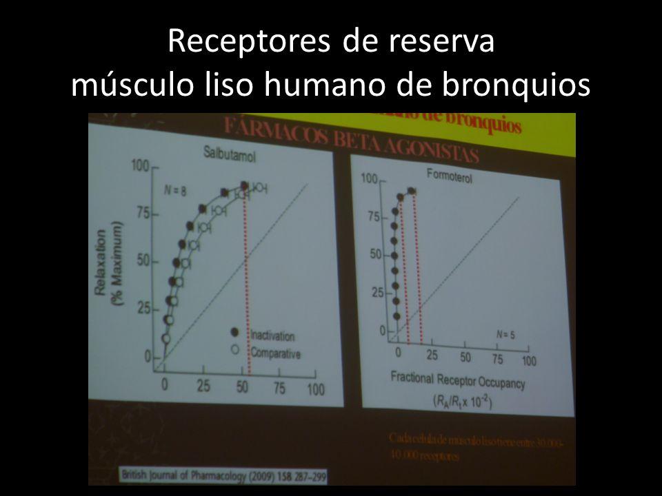 Receptores de reserva músculo liso humano de bronquios