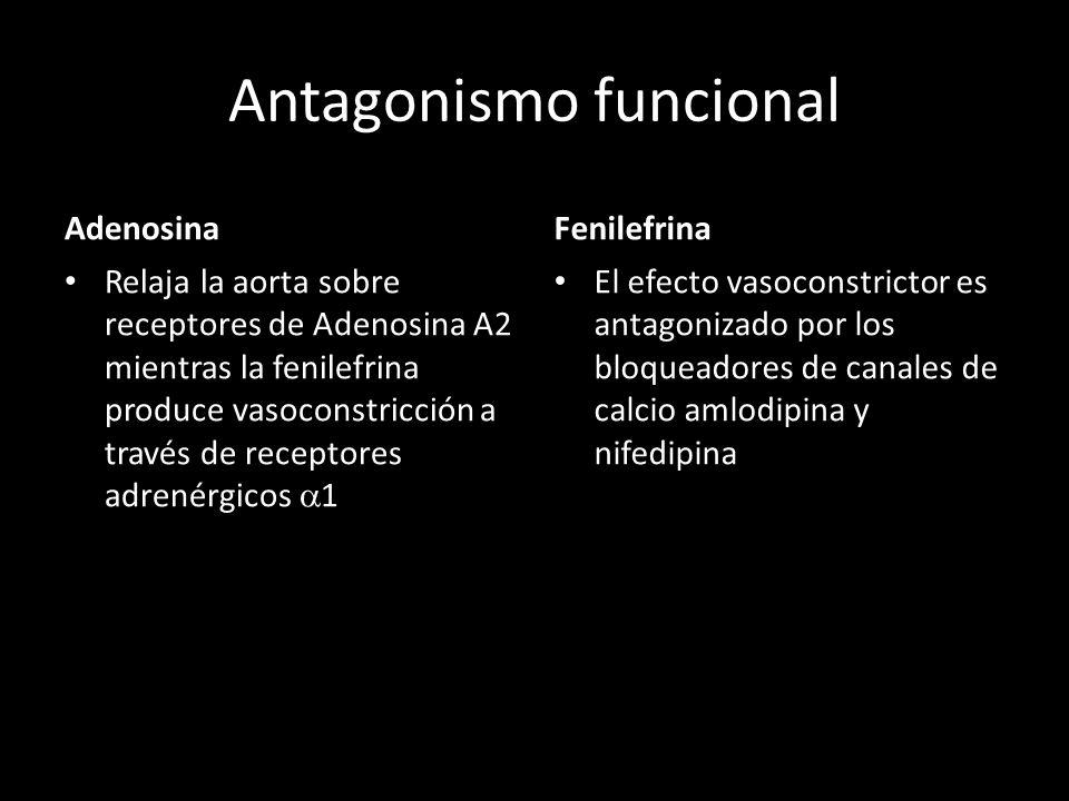 Antagonismo funcional