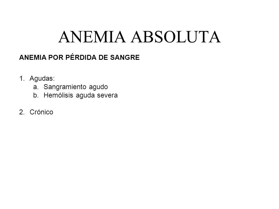 ANEMIA ABSOLUTA ANEMIA POR PÉRDIDA DE SANGRE Agudas: