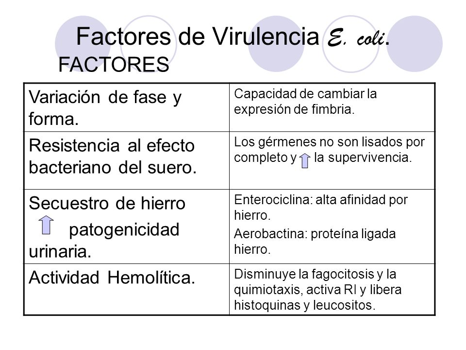 Factores de Virulencia E. coli.