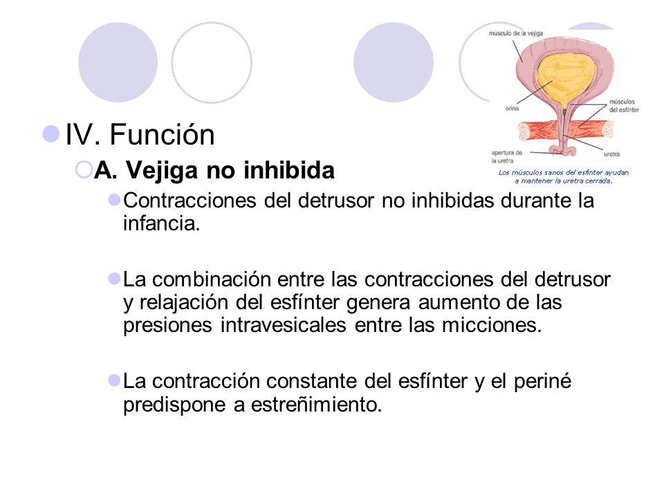 IV. Función A. Vejiga no inhibida