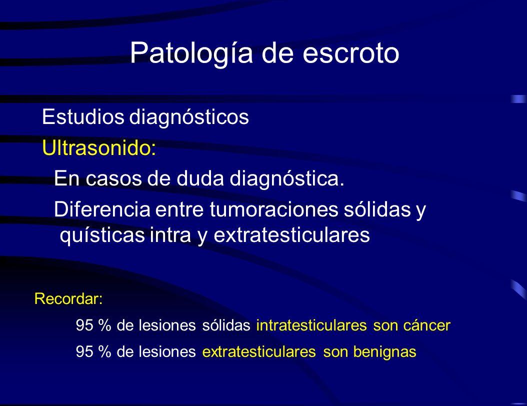 Patología de escroto Estudios diagnósticos Ultrasonido: