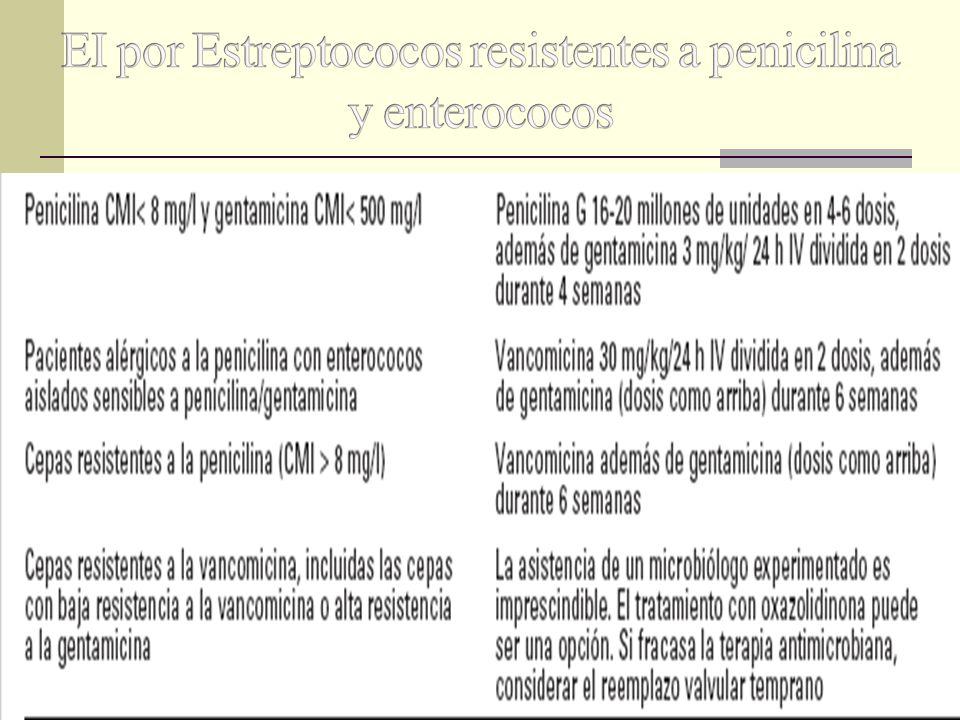 EI por Estreptococos resistentes a penicilina y enterococos