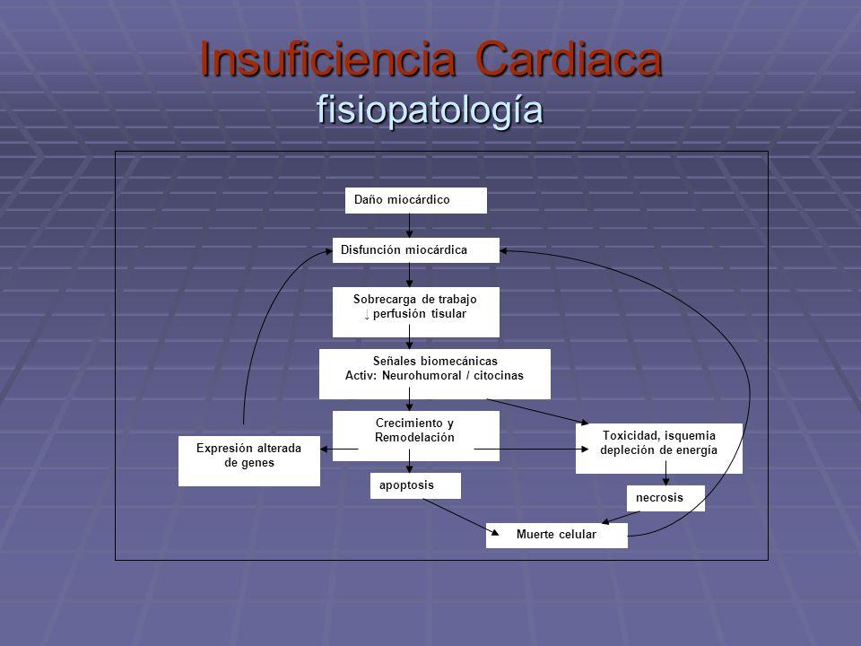 Insuficiencia Cardiaca fisiopatología