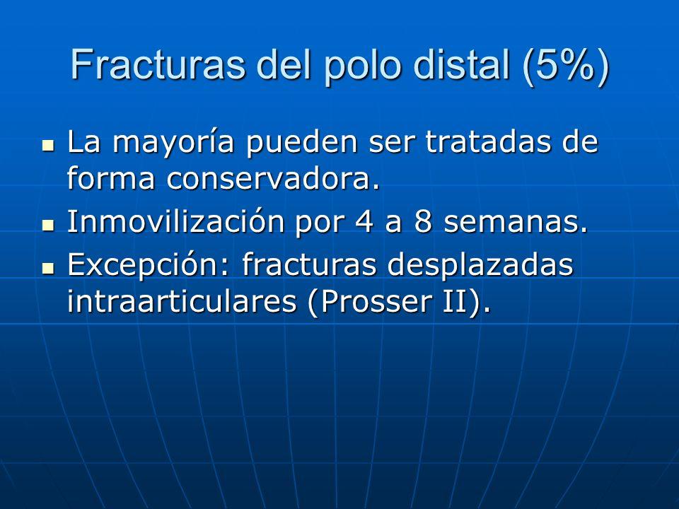 Fracturas del polo distal (5%)