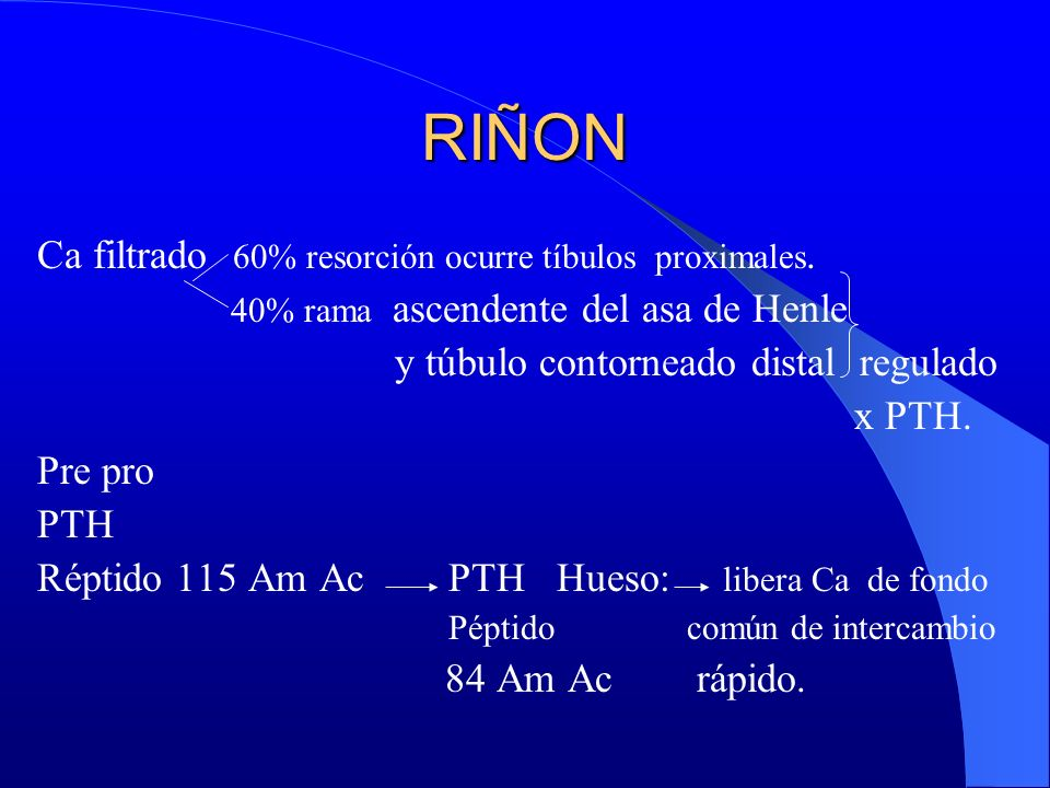 RIÑON Ca filtrado 60% resorción ocurre tíbulos proximales.