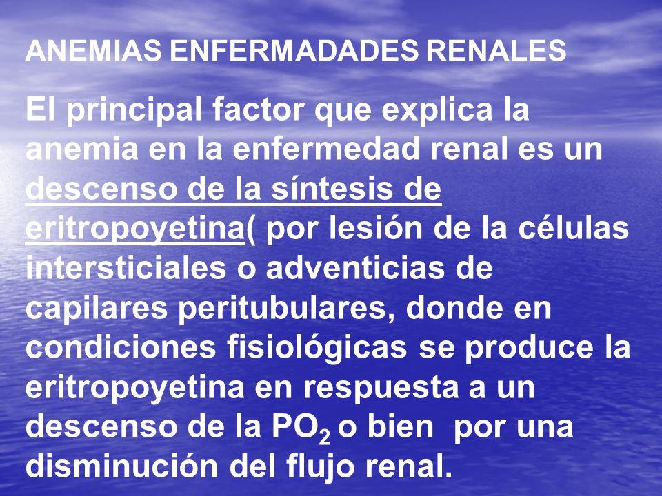 ANEMIAS ENFERMADADES RENALES