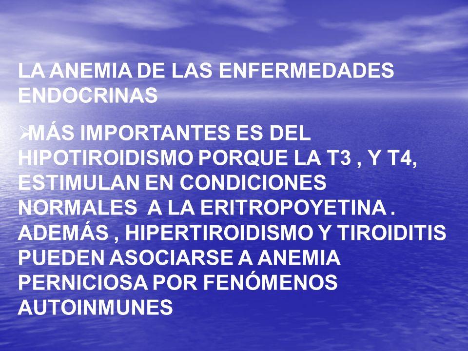LA ANEMIA DE LAS ENFERMEDADES ENDOCRINAS