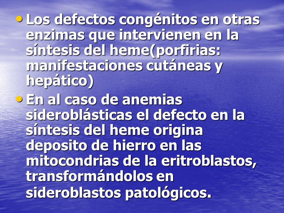 Los defectos congénitos en otras enzimas que intervienen en la síntesis del heme(porfirias: manifestaciones cutáneas y hepático)