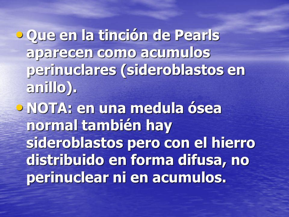 Que en la tinción de Pearls aparecen como acumulos perinuclares (sideroblastos en anillo).