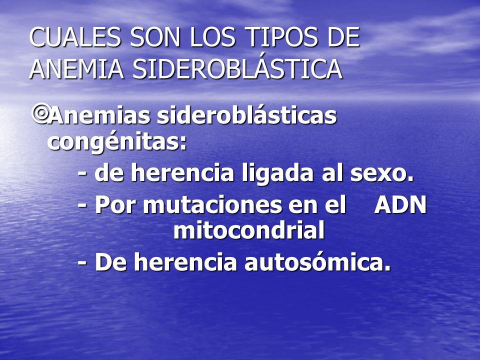 CUALES SON LOS TIPOS DE ANEMIA SIDEROBLÁSTICA