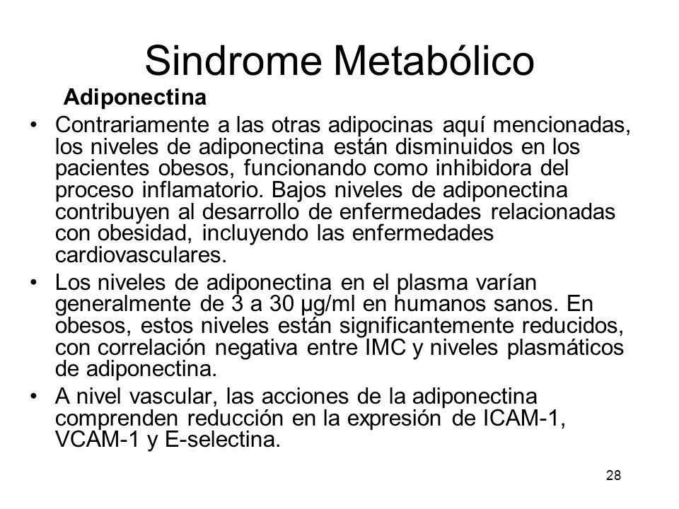 Sindrome Metabólico Adiponectina