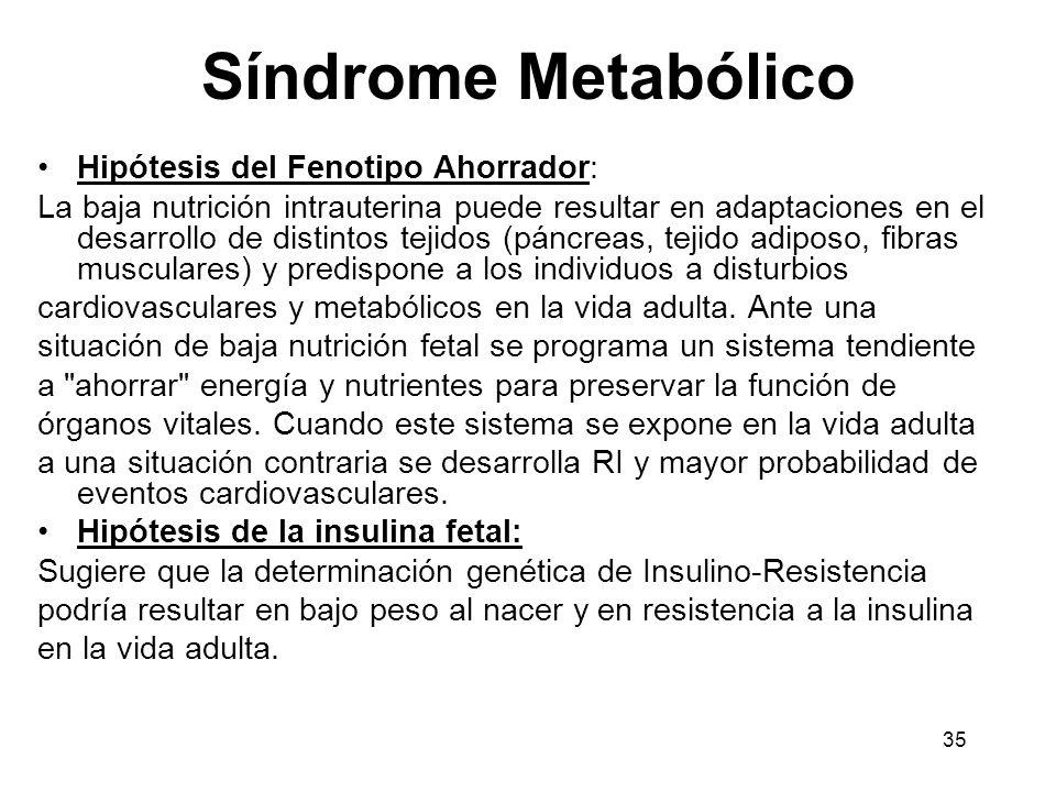 Síndrome Metabólico Hipótesis del Fenotipo Ahorrador: