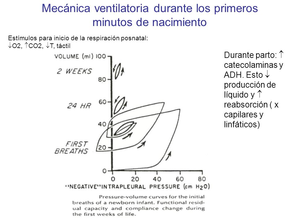 Mecánica ventilatoria durante los primeros minutos de nacimiento