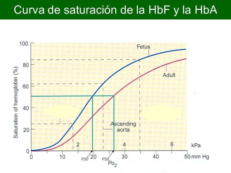 Curva de saturación de la HbF y la HbA