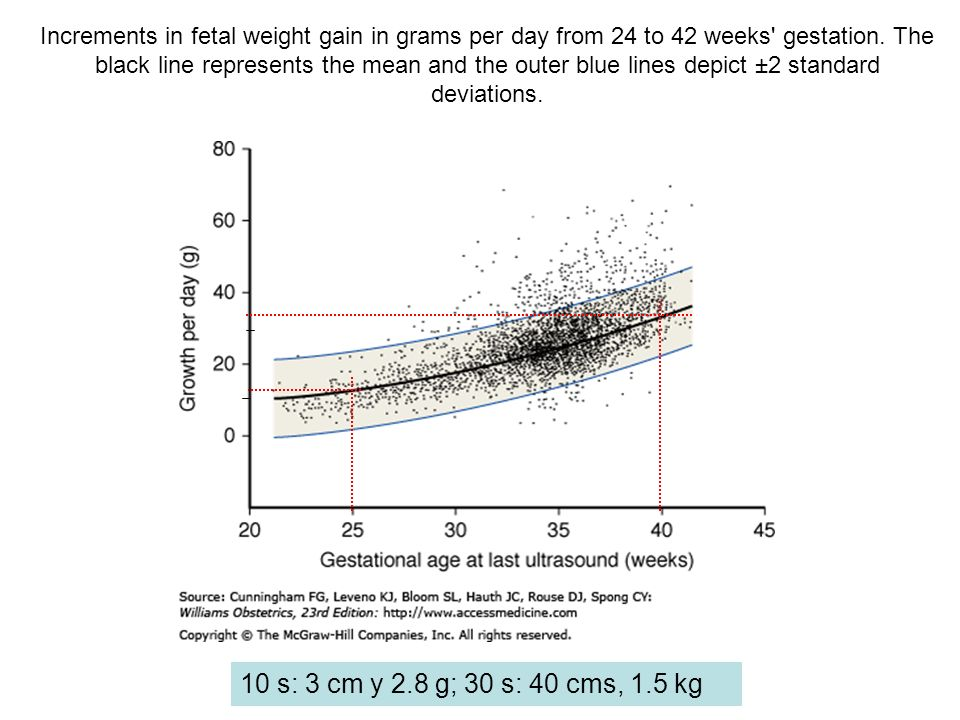 Increments in fetal weight gain in grams per day from 24 to 42 weeks gestation. The black line represents the mean and the outer blue lines depict ±2 standard deviations.