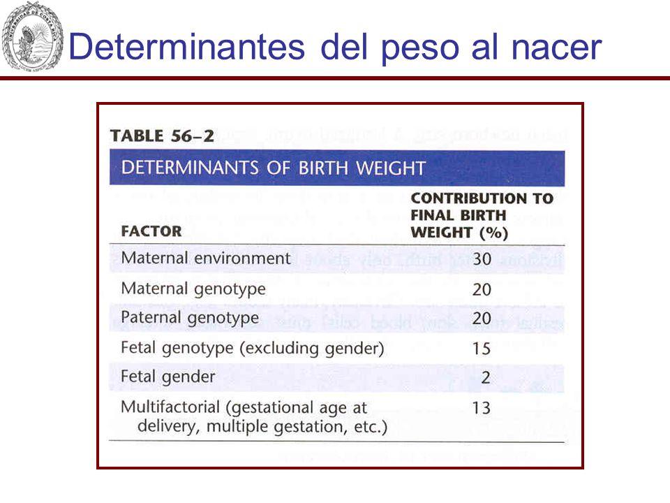 Determinantes del peso al nacer