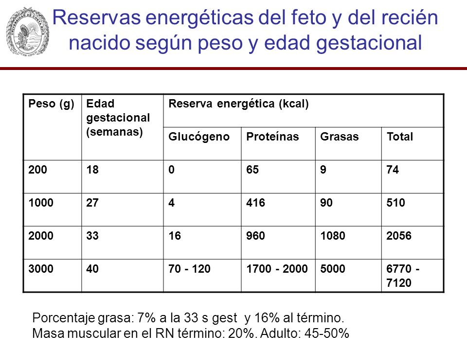 Reservas energéticas del feto y del recién nacido según peso y edad gestacional