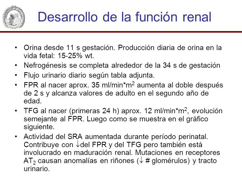 Desarrollo de la función renal